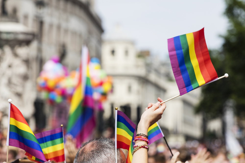 gay pride gender pronouns law